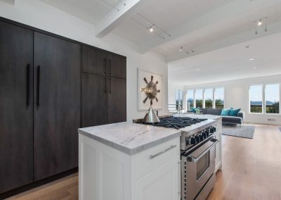 mill-valley-contemporary-kitchen-modern-and-traditional-custom-cabinets-bay-area-2